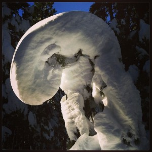 Snow Dragon near Omega Rest Stop